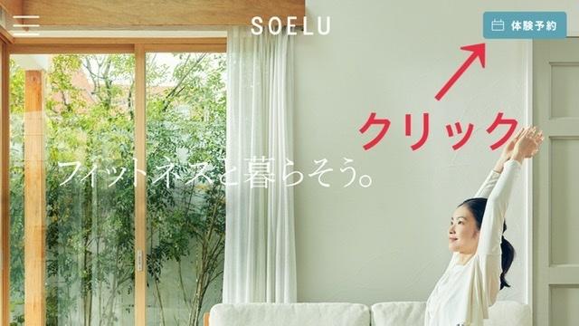 SOELUのホームページ